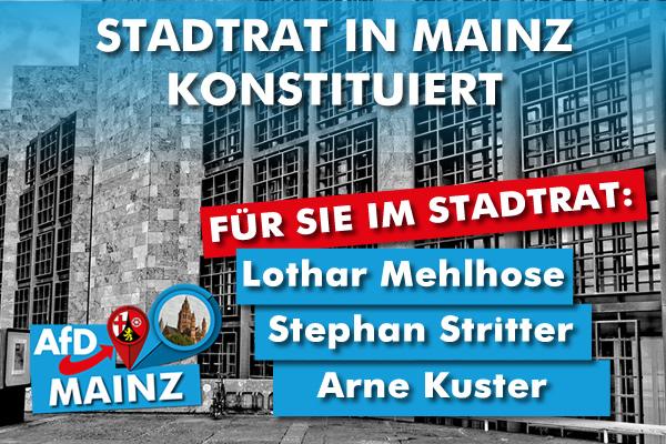 AfD im Stadtrat von Mainz