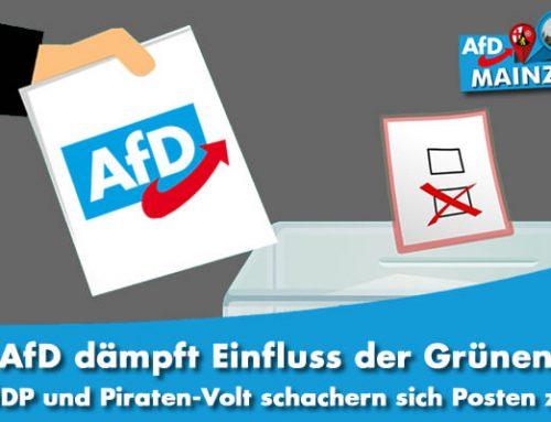 AfD dämpft Einfluss der Grünen – ÖDP und Piraten-Volt schachern sich Posten zu