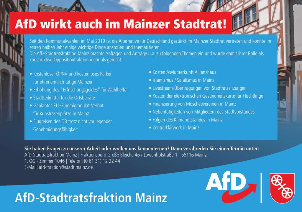 AfD wirkt im Stadtrat Mainz
