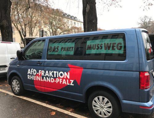 AfD unterstützt Bauern und Landwirte-Demo in Mainz