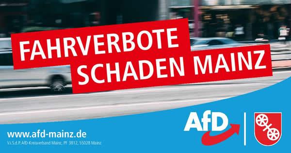 Fahrverbote Mainz