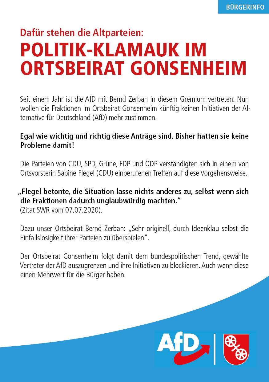 Sachpolitik Mainz Gonsenheim