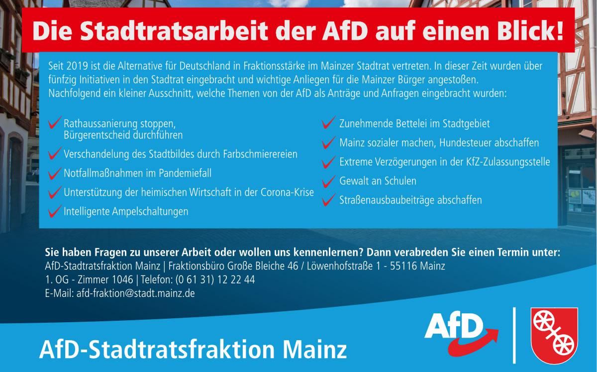 Stadtratsarbeit AfD