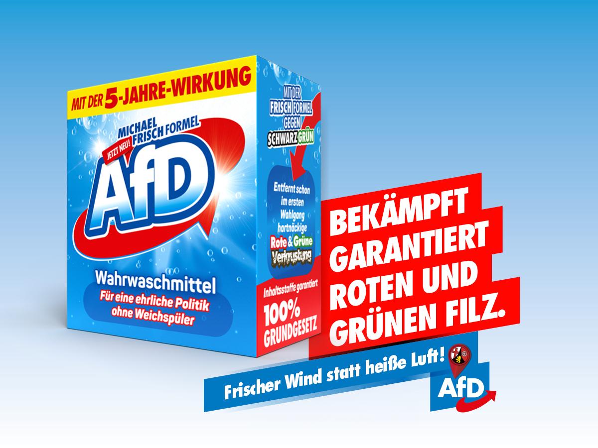 AfD LTW21 - bekämpft Filz