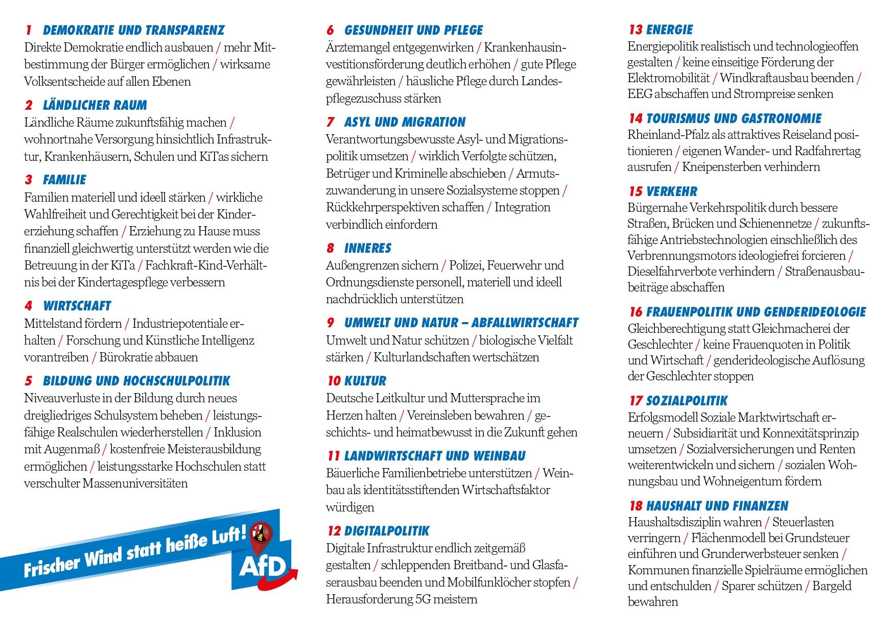 Kurzwahlprogramm AfD LTW 2021 - Seite 2